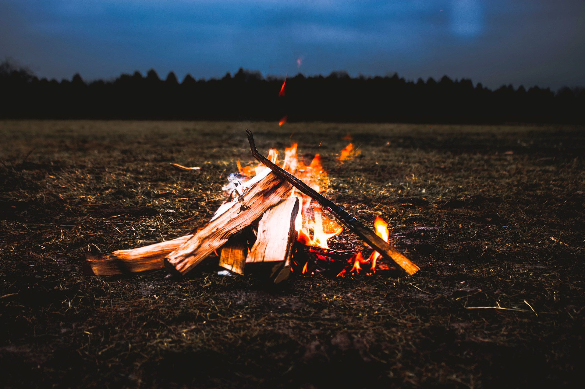 10 Best Things About Camping that Everyone Must Appreciate