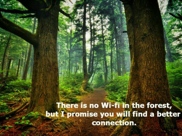 top nature quotes of all time camping