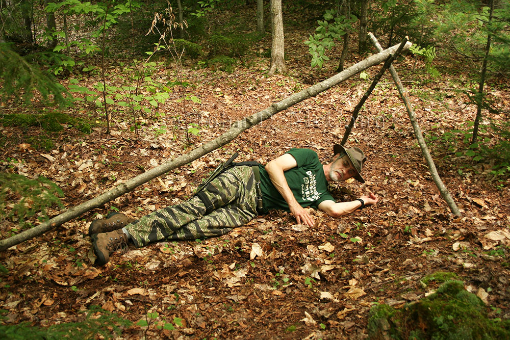 frame hut shelter