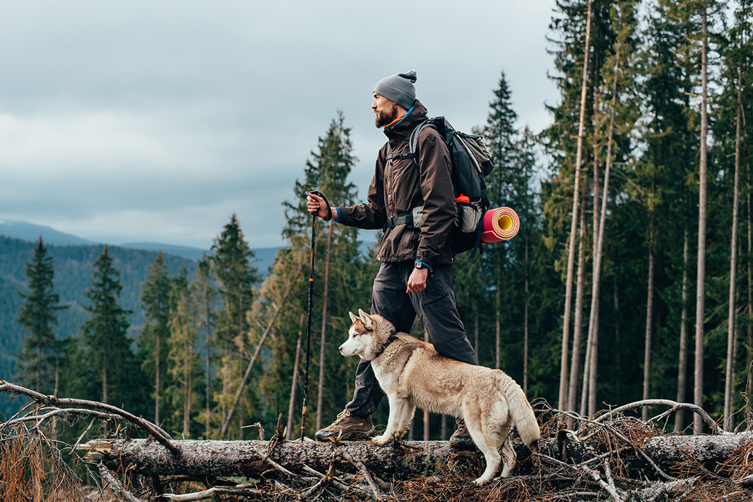 12 Totally Awesome Outdoor Accessories for Your Adventurous Pup