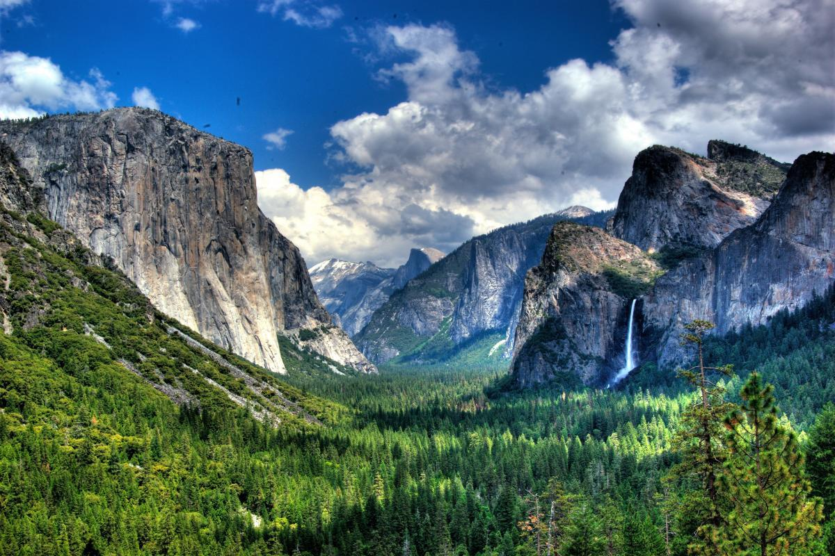 Kid-Friendly Hikes in Yosemite National Park