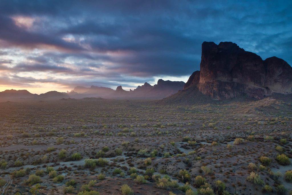 Arizona Winter