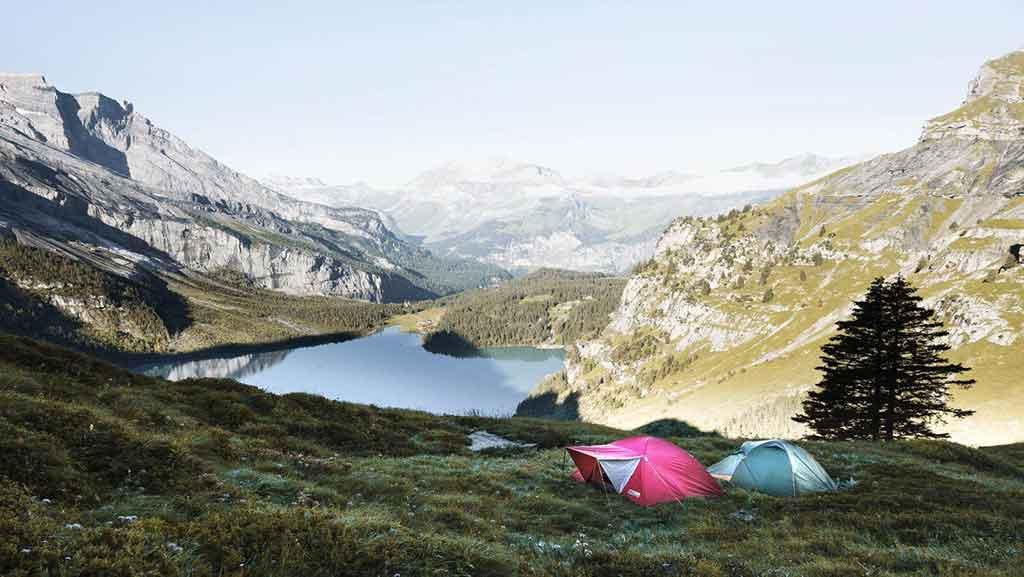 tent buying